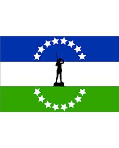 Fahne: Flagge: Rio negro no oficial | Usada extraoficialmente en la provincia de rio negro