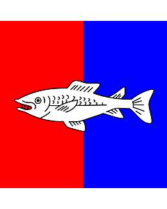 Fahne: Flagge: CHE Nyon   Swiss city Nyon   Miasta Nyon w Szwajcarii