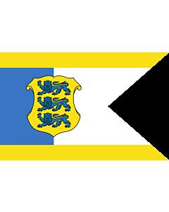 Fahne: Flagge: Estonia - Commander-in-Chief | Estonian Commander-in-Chief | Kaitsevägede ülemjuhataja lipp | Försvarsmaktens överbefäljavares