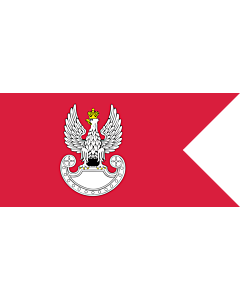 Fahne: Flagge: Polish Land Forces | Polish Ground Forces flag. Adopted in 1993 | Wojsk Lądowych. Wprowadzona w 1993